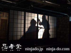 忍者堂_忍者ショー2